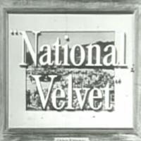 velvet, television, baby name, 1960s,