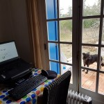 Laptop on a table in front of french doors