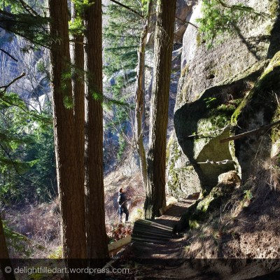 Our family's latest hike on Sumas Mountain
