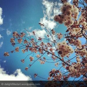 09 blossoms