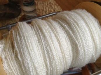 NewZealand Merino Wool _0157