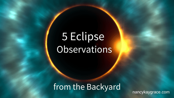 5 Eclipse Observations