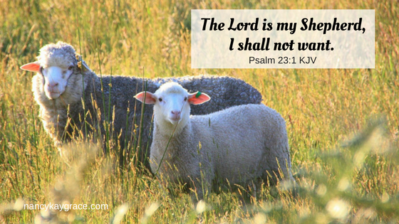 Psalm 23:1 sheep