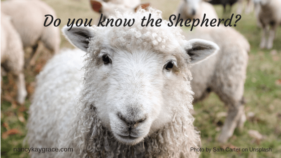 Psalm 23 Do you know the Shepherd