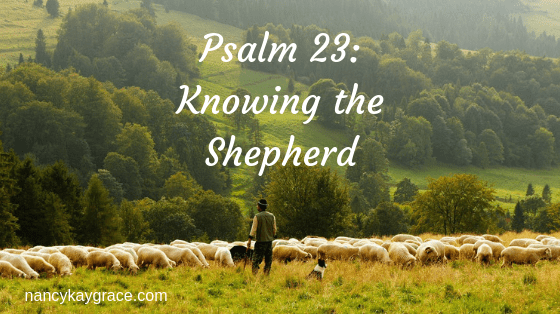 Psalm 23: Knowing the Shepherd