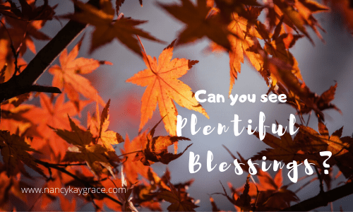 Can You See Plentiful Blessings?