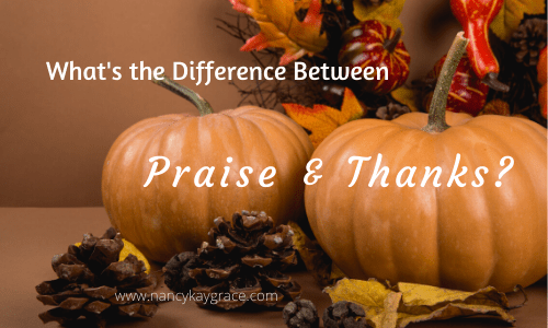 Difference between praise & thanks