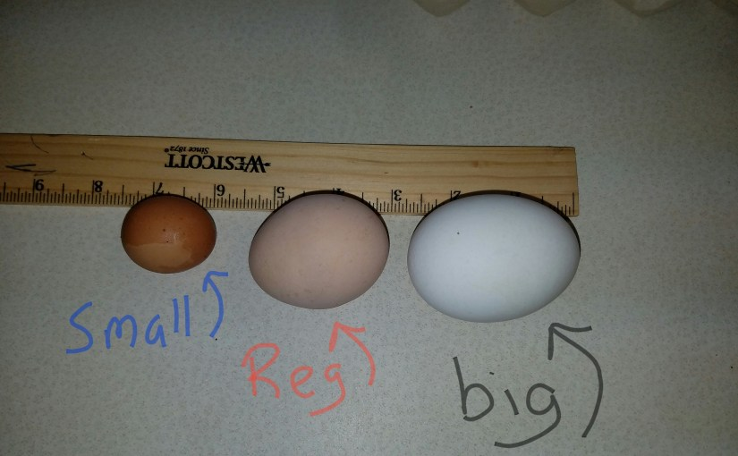 Eggs of Giants