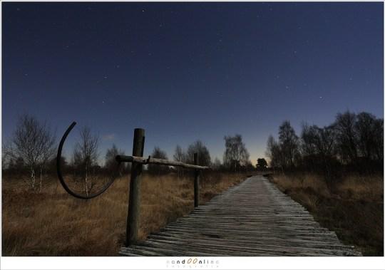 De knuppelbrug over de moerassen van de Groote Peel