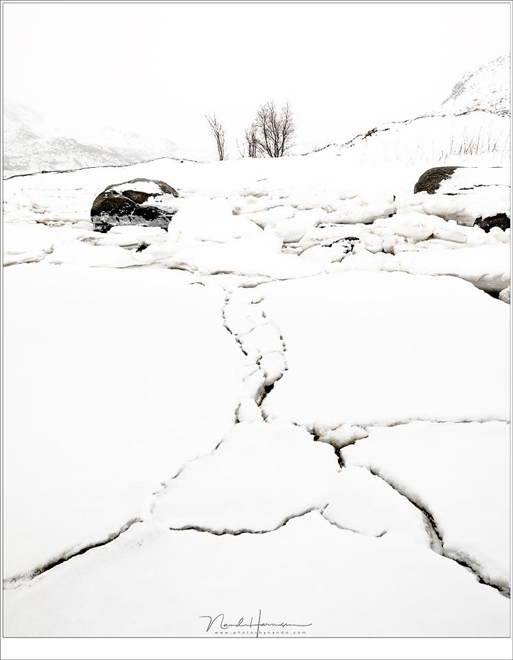 Een selectie foto's van Winter op Lofoten 2018