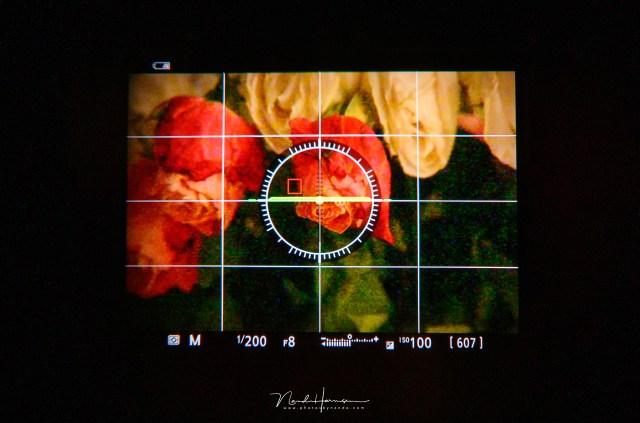 Met de belichtingssimulatie uit is het beeld gewoon goed en kan je scherpstellen en de compositie maken.