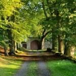 Chateau Folgoux door Marga Elberse