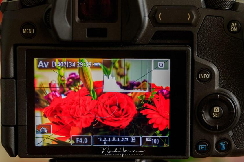 Een contrastrijke beeldstijl voor een goede beoordeling van je foto