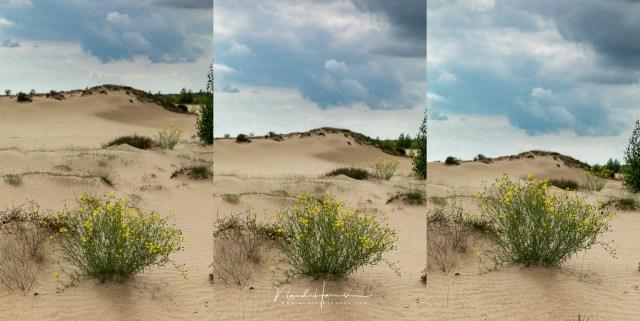 Hoe breng je een voor- en achtergrond goed in beeld? Door de hoogte te veranderen en daarbij de onderlinge verdeling in beeld
