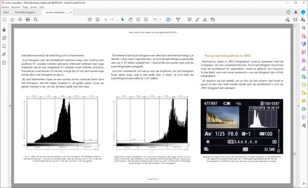 een pagina uit het e-book Licht Vangen