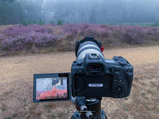 werken met de canon eos r5 - 8 redenen om liveview te gebruiken bij landschapsfotografie