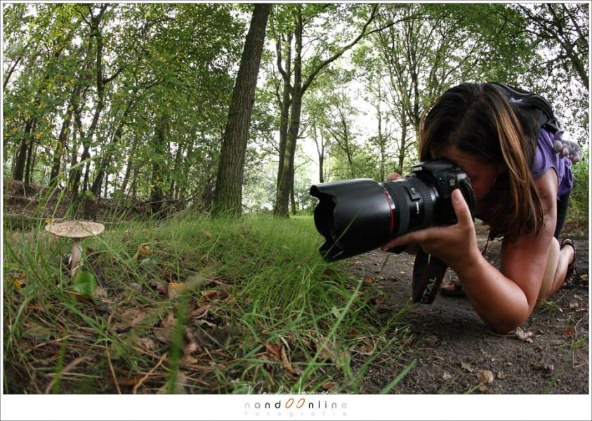 hetwie aan het fotograferen