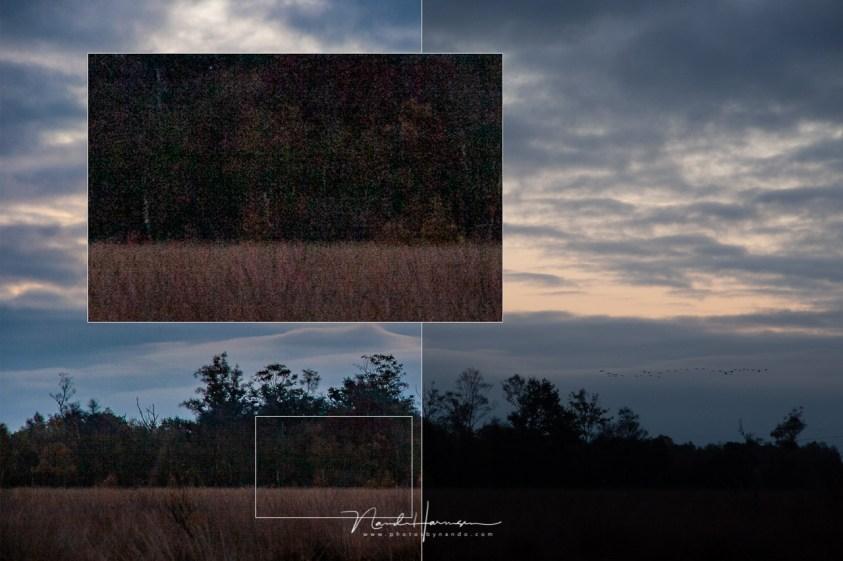 dynamisch bereik van de Canon EOS 20D