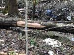 Union County MS crash debris