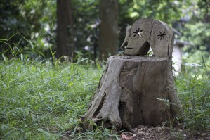 A Chair in the Woods