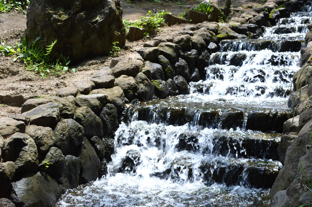 Water @ Satoyama