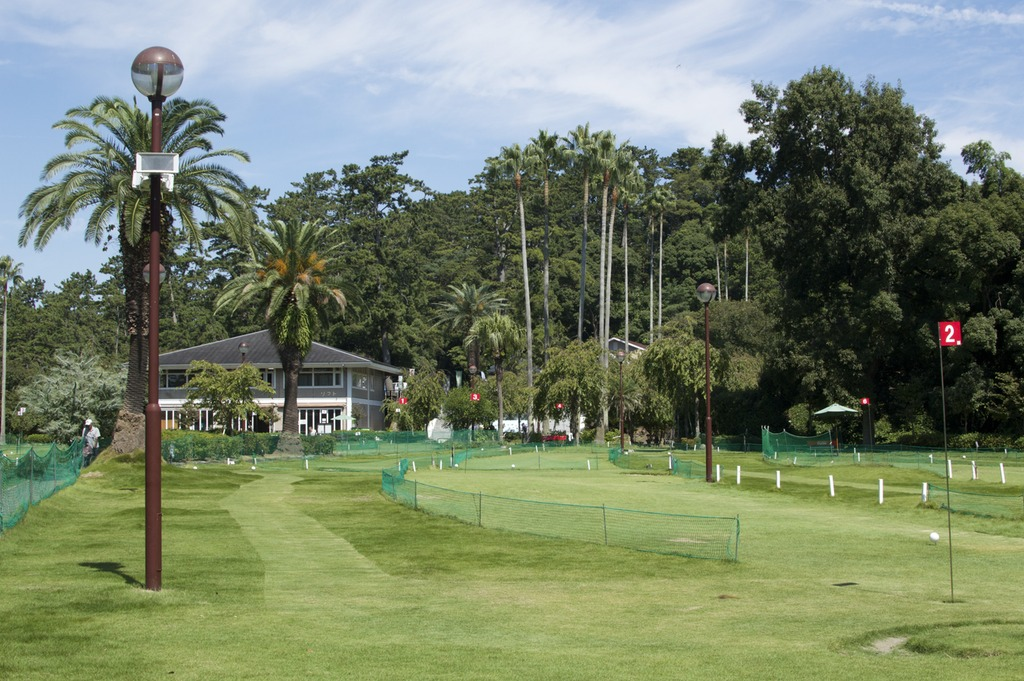 The lawn golf house, with beautiful palm trees