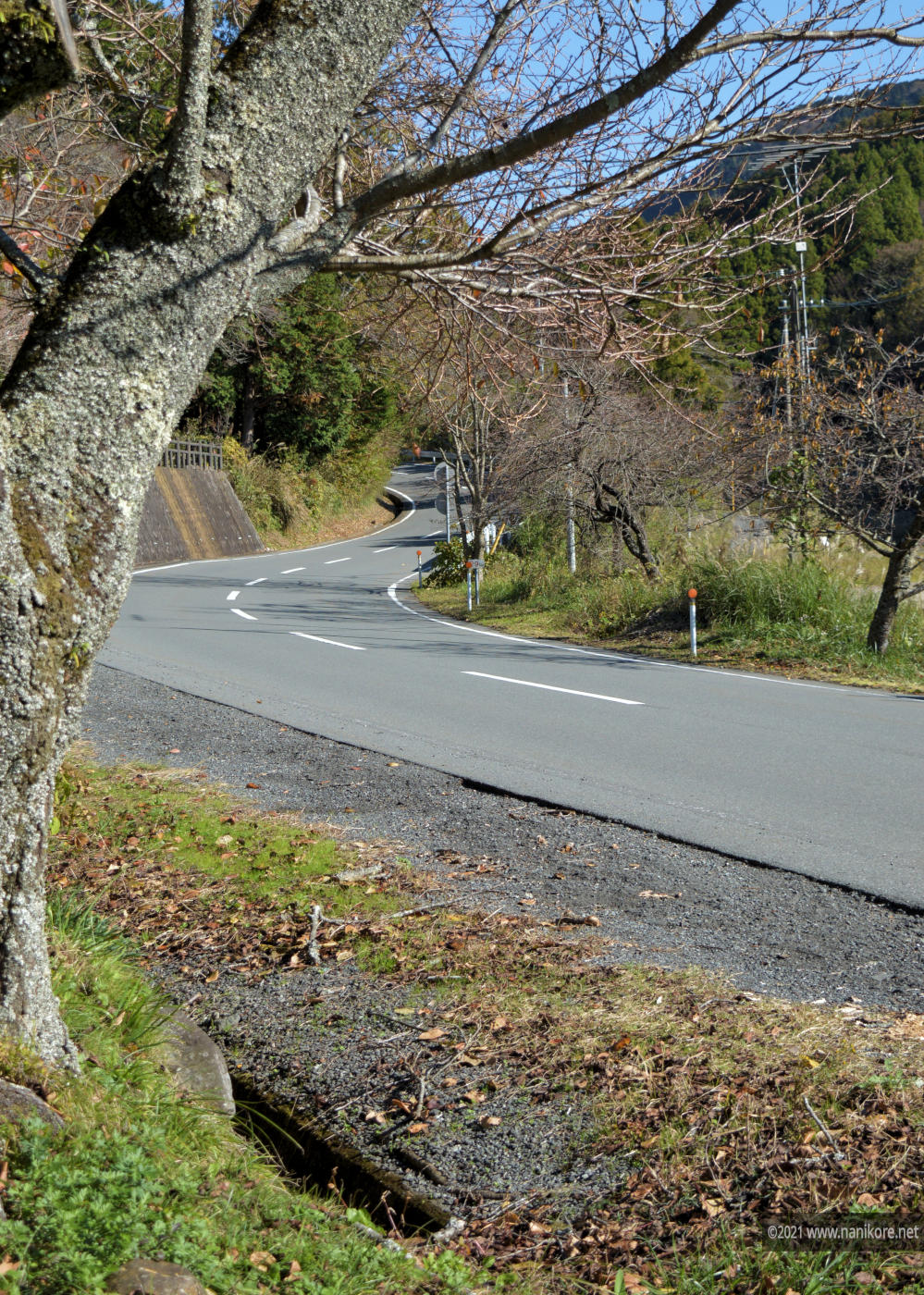 Curved roads near the farms of Izu