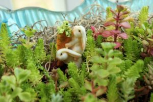 Make a Miniature Garden with Bunnies