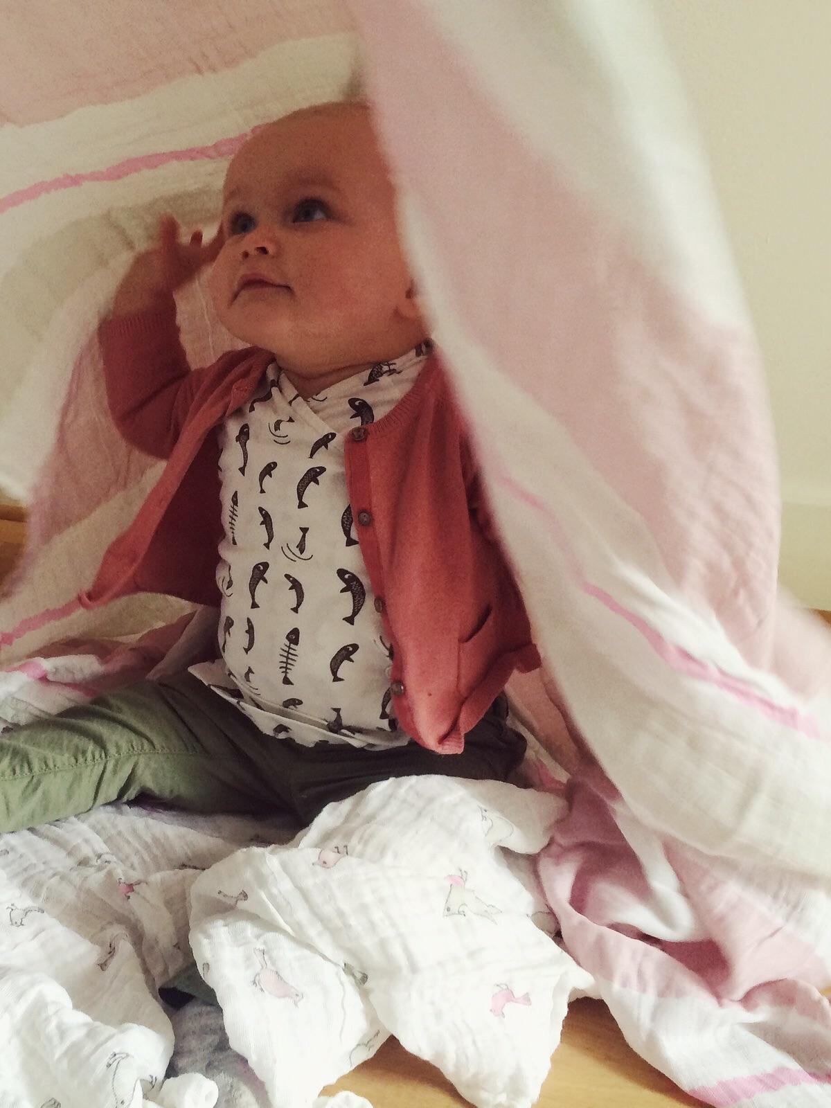 Review Swaddles van Aden  Anais  Nanny Annelon