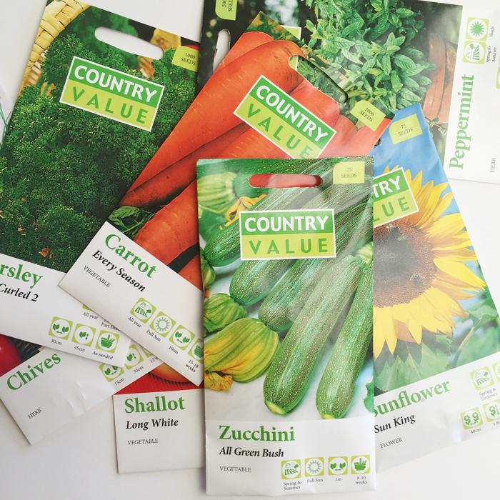 Shredded Paper Seedling Starters, OliviaSFoster, NANNY SHECANDO, September School Holidays