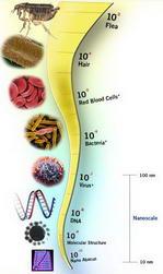 Dictionary of nanotechnology - Nanometer