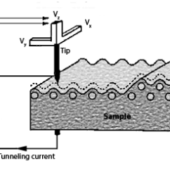 A Well Labelled Diagram Of Microscope Massey Ferguson 240 Parts Scanning Tunneling Microscopy Nanoscience Instruments Schematic