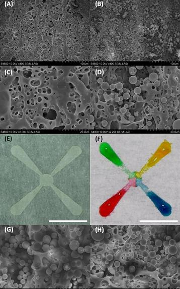 Colored water is used to show how liquid wicks along tiny channels formed in paper using a laser, in research to develop a new technology for medical diagnostics and chemical analysis. Silica microparticles were deposited on patterned areas, allowing liquid to diffuse from one end of a channel to the other. (Birck Nanotechnology Center, Purdue University)
