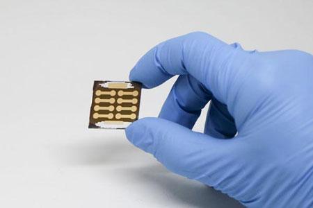 Perovskite Solar Cell
