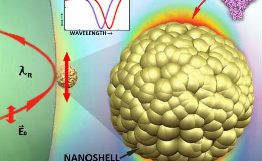 nanoshell