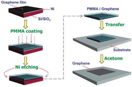 transfer process of CVD-graphene onto transparent substrate