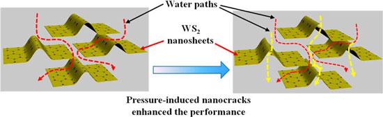 nanofiltration membrane