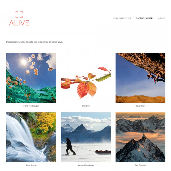 ALIVE Photo website - square