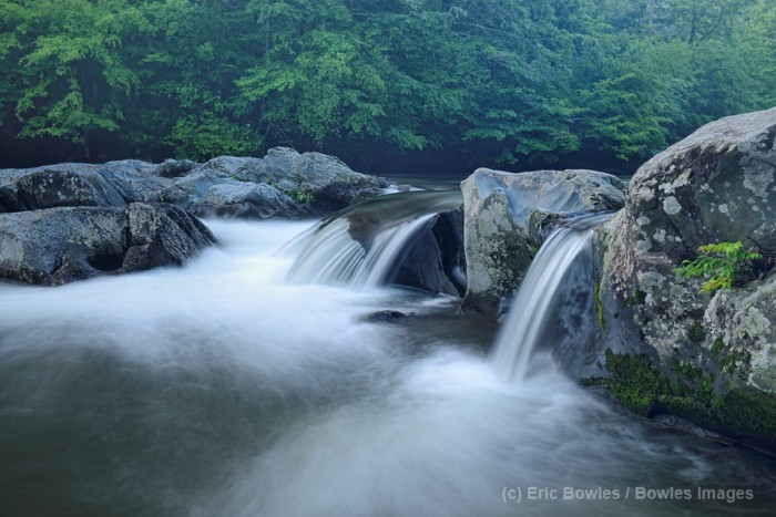 Great Smoky Mountains National Park. Photo by Eric Bowles.