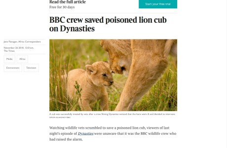 Screenshot of The Times (UK) article about a film crew intervening in nature.