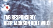 """""""Tag Responsibly. Keep Jackson Hold Wild"""" campaign."""