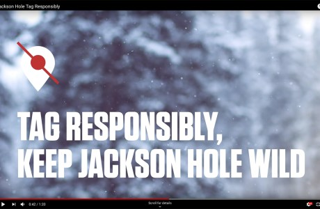 """Tag Responsibly. Keep Jackson Hold Wild"" campaign."