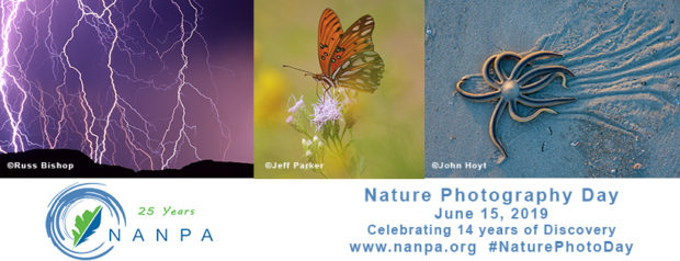 Check NANPA's website for ideas on how you can participate in Nature Photography Day.
