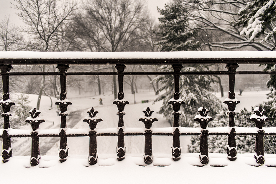 Photo of a snow-covered railing Central Park.  When a foreground element becomes the main subject.