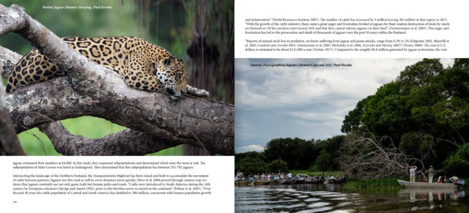 Image of a page layout with two photos and two blocks of text.