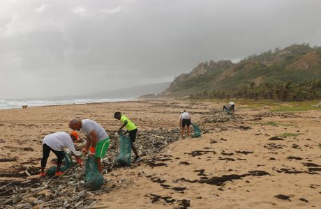 Volunteers cleaning a beach. Photo by Brian Yurasits on Unsplash.