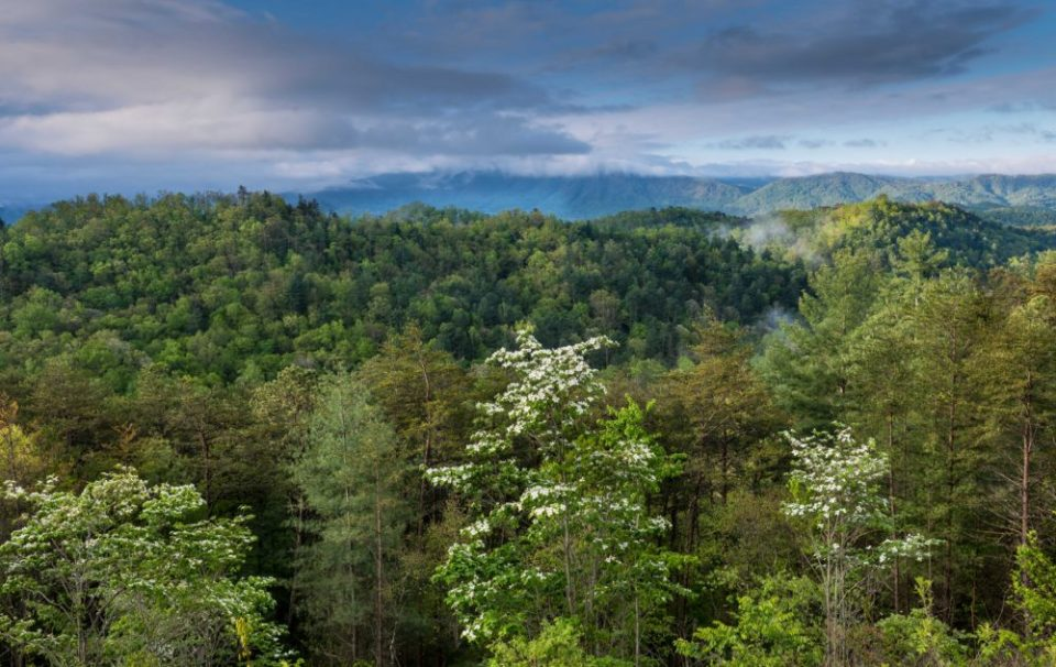 View of Smokey Mountains from Foothills Parkway