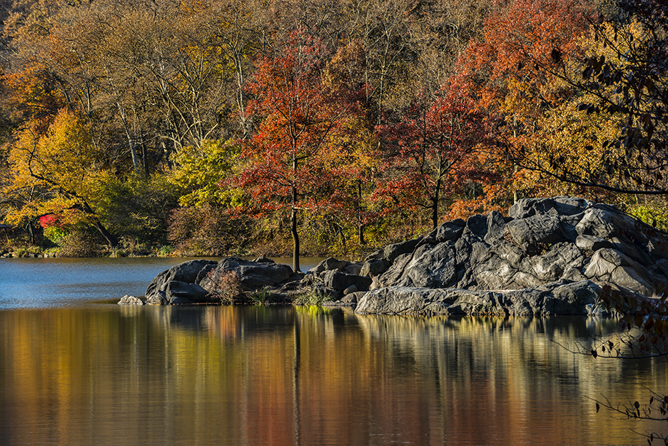 Horizontal version of tight shot of fall foliage and rock outcrops at The Lake in Central Park. A simple reorientation of the composition totally changed the look and feel of the scene. (200mm)