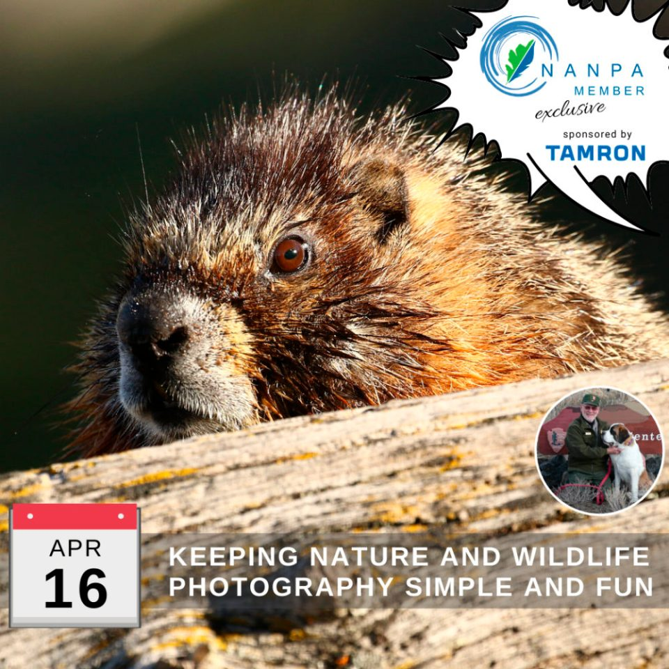 Ad to sign up now for Douglass Owen's NANPA webinar on Keeping Nature and Wildlife Photography Simple and Fun, scheduled for April 16, 2020 at 6:00 PM Eastern.