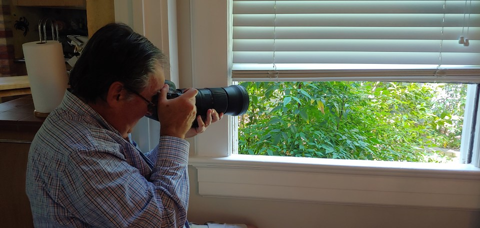 The author photographing backyard birds from his dining room.